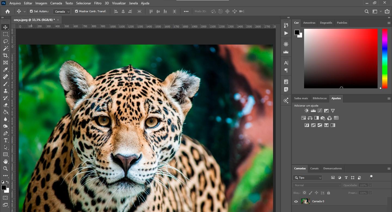 abrir-imagem-onca-photoshop-eng-dtp-multimidia