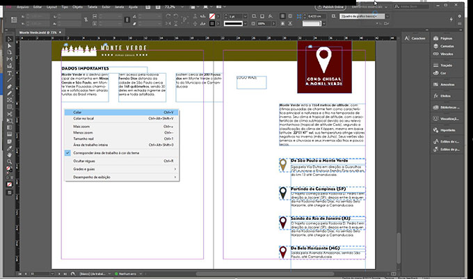 cole-no-indesign-eng-dtp-multimidia