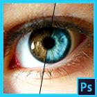Transformando com Photoshop