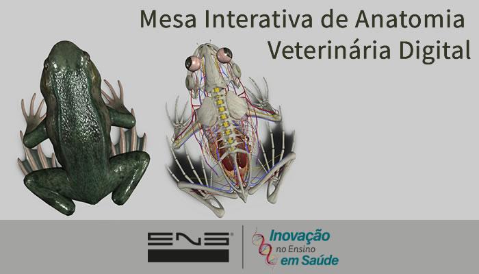 Mesa Interativa de Anatomia Veterinária Digital